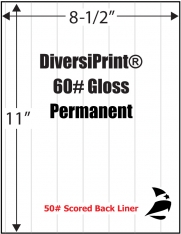 "DiversiPrint® 60# Gloss Adhesive Paper, Scored, Permanent, 8-1/2"" x 11"", 1,000 Sheets"