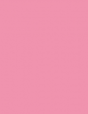 60# Astrobright Pulsar Pink Adhesive Paper, Strip-Tac Plus�, Permanent, 8.5 x 11, 100 Sheets/Box