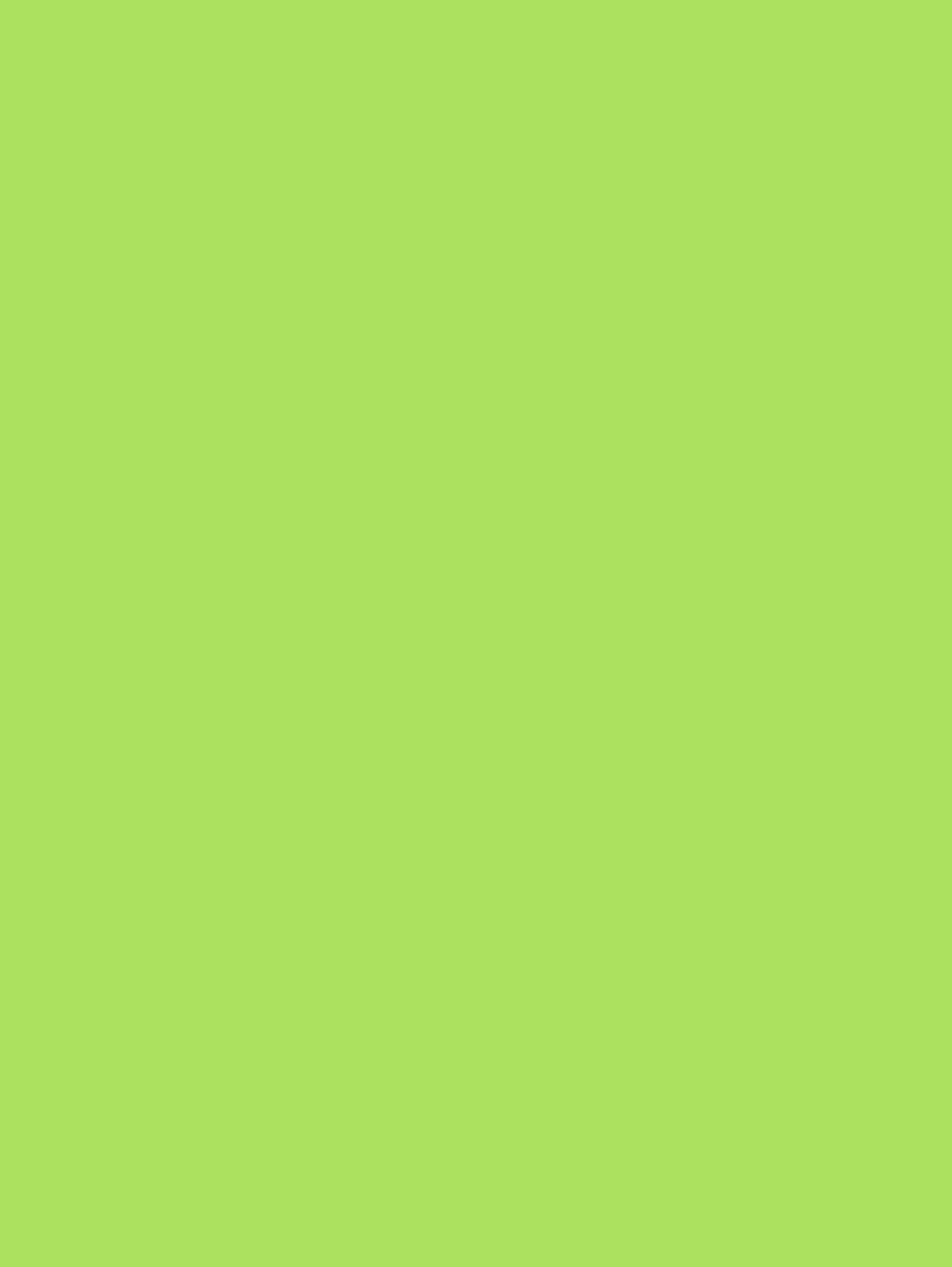 60 Astrobright Terra Green Adhesive Paper Strip Tac Plus