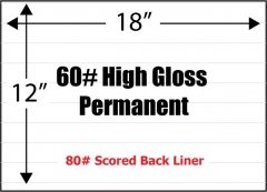 "High Gloss 60# Adhesive Paper, 12"" x 18"", Permanent, Scored Liner, 100 Sheets"